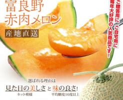 furano-melon-2016-1